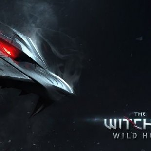 30 минут The Witcher 3: Wild Hunt